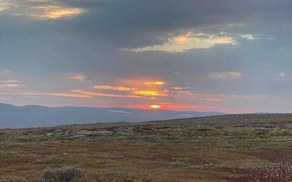 Hardangervidda - solnedgang