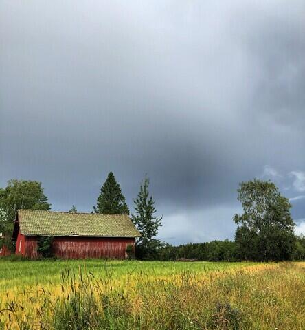Vestby kommune. Foto: KimAnnStaib