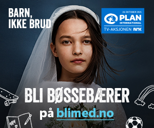 300x250-banner_digital-boessebaerer.jpg